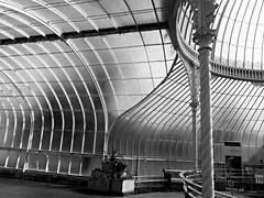 Kibble Palace (Wider World) Tags: monochrome scotland iron glasgow glasshouse westend botanicgardens kibblepalace