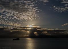 (hmxhm) Tags: newzealand clouds sunrise olympus wellington aotearoa