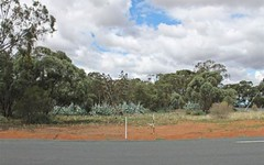 Lot 1 Central Road, West Wyalong NSW