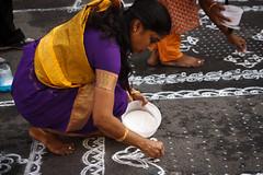 Purple sari making kolam beginning.jpg (melissaenderle) Tags: mylapore tamilnadu kolam asia festival