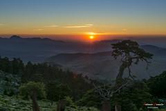 Sunset in Torrecilla. (Antonio Camelo) Tags: trees sunset sky naturaleza mountain sol nature night arbol noche photo nikon montaa puesta