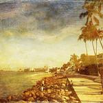 """""""My life is like a stroll on the beach...as near to the edge as I can go.""""  --Thoreau thumbnail"""