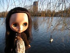 minerva + the goose
