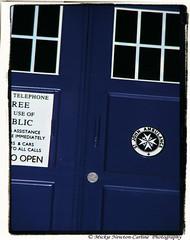TARDIS Blue (Mickie Newton-Carline) Tags: macro yorkshire doctorwho fujifilm tardis fujifinepix southyorkshire fujifilmfinepix womenphotographers macromondays ladyphotographers fujifinepixs5800