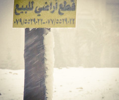 """Ice-land"".. for Sale.. (SonOfJordan) Tags: snow cold ice weather sign canon eos post sale amman jordan snowing xsi 450d sonofjordan shadisamawi wwwshadisamawicom samawisonofjordan canoneosxsi450dwwwshadisamawicomshadi samawisonofjor"