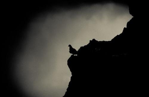 Pigeon Rock