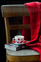 Reading Time.. (aisha.yusaf) Tags: book nikon anyway 85mmf14d redblanket itsbeenawhile ehem so 12c d700 atrilogy itscooloutside butonceistarticantstop andthedaysaregettinglonger outsideonthebalcony itscalledthehungergamesbysuzannecollins startedreadingagain thisisthe1stbook makingthemostofthechairoutside onlyafewmoredaystogotillweheadhomeagain wishicouldpackthischairandafewotherfurnitureanddishesinmytrunk thatsrealsteam ithinkthelasttimeireadwasduringoursummerholslastyear thatwas3summersago startedthisbooklastnightandlovingitsofar andthesunsshining iknowthecupswonky buttheresaslightdentinthechairseatitself thatswhyicouldntgettheteatositstraight iknowitsnothingtoboastabout butifinishedreadingtheentiretwilightserieswhichis4booksin6days asisaidonceistartreadingicannotputthebookdown