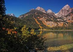 Beautiful Day At The Lake (P. Oglesby) Tags: autumn reflection grandtetonnp thehighlander godlovesyou bradleylake