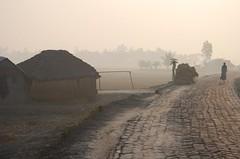 Rural Bengal (easwarc) Tags: morning rural village sunderbans westbengal dayapur