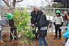 Mehcad Brooks & students planting