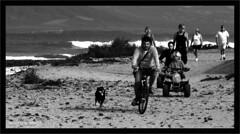 Viajeros (Imati) Tags: familia canon fuerteventura playa paseo viajeros corralejo ocano