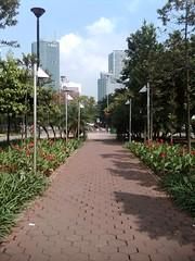 Jalan-jalan ke taman menteng (daEsUke_cHan) Tags: background jakarta ban taman fotografi pemandangan fotofoto burung menteng rangka penghijauan kumpulkumpul