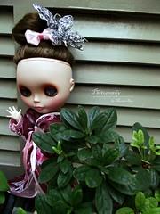 Dorothy, Blythe T42 custom