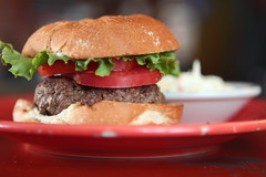 """1/2 Pounder"" (Just George 2) Tags: food dinner tomato dof bokeh beef burger sandwich lettuce hamburger meal fiestaware coleslaw"