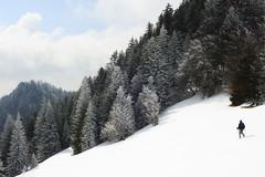 (Loc Milliere) Tags: winter snow montagne grenoble landscape 50mm hiver chartreuse neige paysage montain 50f14 grandechartreuse d700 nikond700