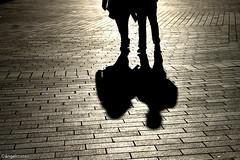 PAREJA EN LA SOMBRA (ángel mateo) Tags: ángelmartínmateo cáceres extremadura españa plazamayordecáceres plaza pareja sombra paseo luz baldosas líneas walk light shade square tiles couple lines propuesta ángelmateo pasosanónimos fotourbana shadow