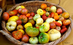 Heirloom Tomatoes (Harry Lipson III) Tags: food vegetables tomato salad tomatoes vegetable veggies heirlooms ingredient heirloomtomatoes harrylipsoniii harrylipson harryshotscom harrylipson3 wwwharryshotscom totalslackerphotographycom totalslackerphotography thephotographyofharrylipson