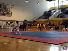 stefanou_15_5_2016_knockdown_6