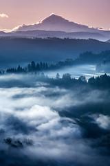 Mt. Hood (Oleksandr Photography) Tags: trees sun fog mthood
