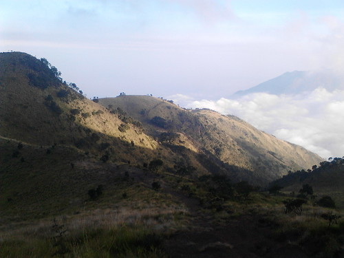 "Pengembaraan Sakuntala ank 26 Merbabu & Merapi 2014 • <a style=""font-size:0.8em;"" href=""http://www.flickr.com/photos/24767572@N00/26558559383/"" target=""_blank"">View on Flickr</a>"
