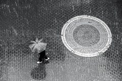 rain (Berkan Byktmbk) Tags: street people blackandwhite bw monochrome rain umbrella walking outdoor geometry streetphotography human fujifilm streetphoto xt1