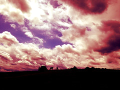 Horse Farm and Clouds (Alexander C. Kafka) Tags: horse silhouette clouds landscape farm