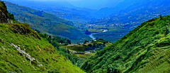 Sapa, Ricefields (gerard eder) Tags: world travel landscape asia rice north vietnam southeast northern landschaft ricefields sapa riceterraces reise