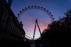 London Eye (tammydesu) Tags: city sunset sky london eye nature wheel night cityscape purple londoneye ferris