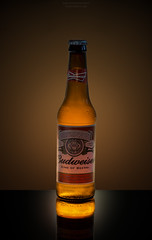 Cheers! (Alex Apostolopoulos) Tags: reflection beer frozen bottle flash budweiser lager