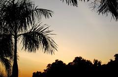 BANDAR SERI BAGAWAN BRUNEI DARUSSALAM SUNSET (patrick555666751) Tags: sunset de soleil asia flickr heart south group coucher du east asie brunei sud est seri bandar darussalam bagawan bandarseribagawanbruneidarussalamsunset