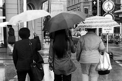 Umbrella Trio (Isengardt) Tags: street bw white black monochrome rain weather umbrella germany deutschland women europa europe olympus sw bags monochrom weiss schwarz regen wetter omd taschen esslingen frauen em1 regenschirm badenwrttemberg strase 1250mm