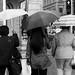 Umbrella Trio