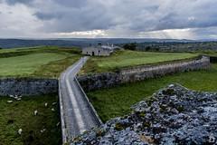 Luces de tormenta ([Nelooo]) Tags: portugal atardecer luces camino carretera nubes muralla almeida pradera ovejas fotaleza