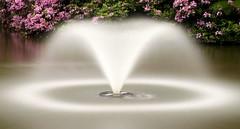 Dingle Gardens, Shrewsbury, Shropshire (PeskyMesky) Tags: longexposure mist fountain canon pond shropshire tripod shrewsbury le canoneos500d dinglegardens