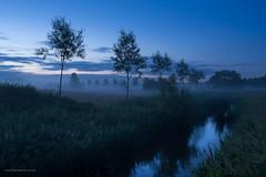 BlueSomertonL-3647 (toniertl) Tags: longexposure trees mist reflection silhouette night river dark evening meadow valley fields bluehour somerton cherwellvalley nikkor2885 toniphotoxoncouk