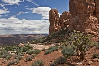 Utah Splender        Explored #360