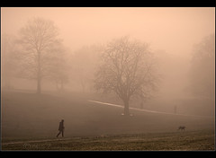 Cold Warmth..... (Chrisconphoto) Tags: trees mist cold fog walker goodlight sherdleypark
