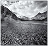 Bow Creek Black & White (Panorama Paul) Tags: bw canada monochrome alberta banffnationalpark bowlake nohdr sigmalenses nikfilters vertorama nikond300 wwwpaulbruinscoza siverefex paulbruinsphotography