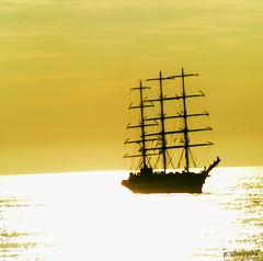 Tall Ships I (Paulo Silveirinha) Tags: portugal sailing tallships wow1 wow2 wow3 wow4 ruby3 ilhavo thegalaxy pla