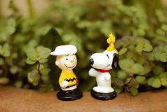 meu amigo Charlie Brown ♥ (Natália Viana) Tags: friends beagle toys miniature peanuts snoopy charliebrown miniaturas minduim natáliaviana