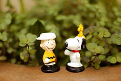 meu amigo Charlie Brown  (Natlia Viana) Tags: friends beagle toys miniature peanuts snoopy charliebrown miniaturas minduim natliaviana