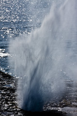 The Spouting Horn (ChrisInAK) Tags: hawaii blowhole danger drama dramatic island kauai naturalremedy nature ocean rocks sea shore splash spoutinghole tourism travel tropical tropics vacation water