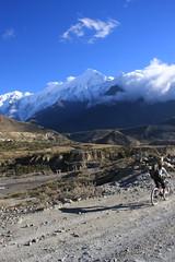 Some down hill on a Multi sport treking Mountain biking rafting kayaking trip in Nepal