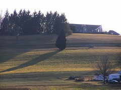 Long shadow (eyriel) Tags: light sunset shadow sun vineyard winery hillside