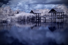 lostworld_03 (photosource) Tags: longexposure blue trees winter lake reflection clouds pond nikon frost texas filter infrared hoya winterscape leaguecity r72