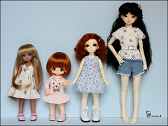 :: My Bjd family :: (AninhaDias) Tags: family green doll juice tan famlia coco mohair bjd resin resina boneca kiki yumi twiggy msd kinoko latidoll elfdoll leeke lati yosd bambicrony ciaojudy