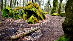 Rocks (_chrisUK) Tags: wood trees winter tree green nature leaves rock forest outdoors four lumix moss woodlands rocks outdoor panasonic micro formations fallenleaves thirds brownleaves fourthirds greenrock yellowrock greenrocks yellowrocks gf3 chrisuk