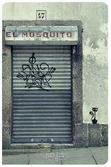 El mosquito (Luscofusco_Gz) Tags: stencil galiza gato compostela porta entrada rotulo pintada sanpedro tipografia tasca ra abandono taberna luscofusco reixa pechado vios martiopicallo