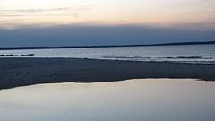 IMG_5692 (Martina Mastromonaco) Tags: beach vineyard martha s subset