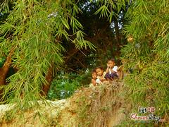 Curious Kids - Preah Vihear.jpg